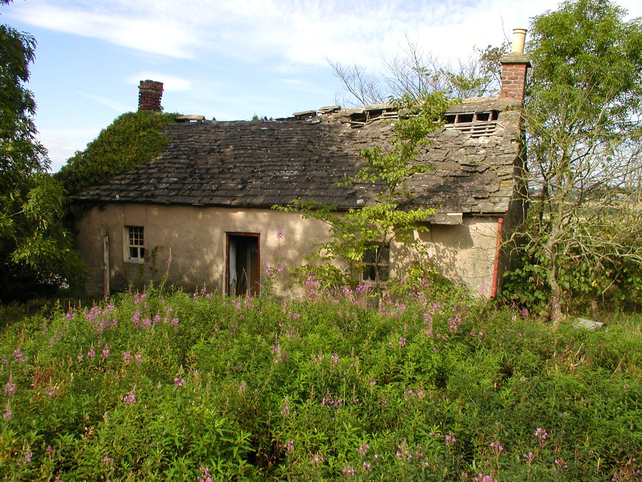 Tiny Home Designs: Netherton Cottage